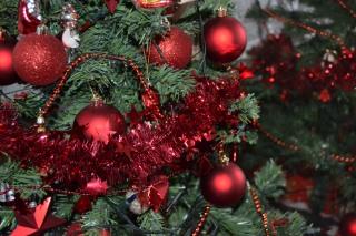 Vianočný stromček u nás doma, stačí malý