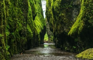 Príroda a kopce