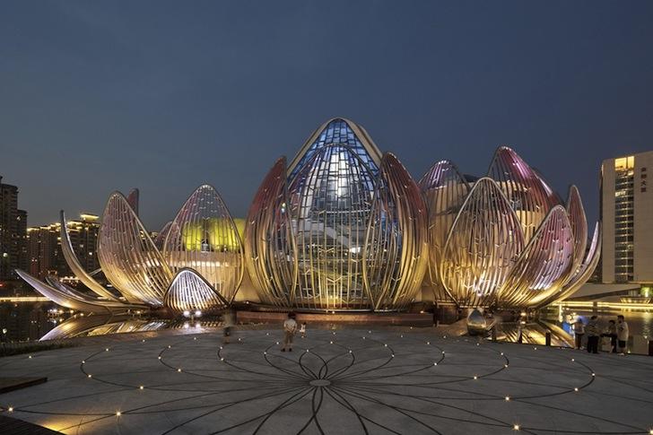 Lotus-Building-by-studio505-7