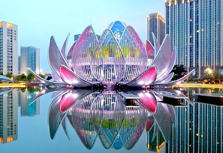 Lotus-Building-by-studio50511