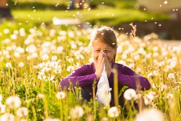 alergia1-e1457506824181