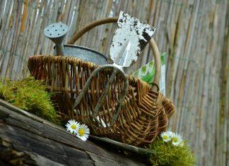 svetovy-den-nahych-zahradkarov
