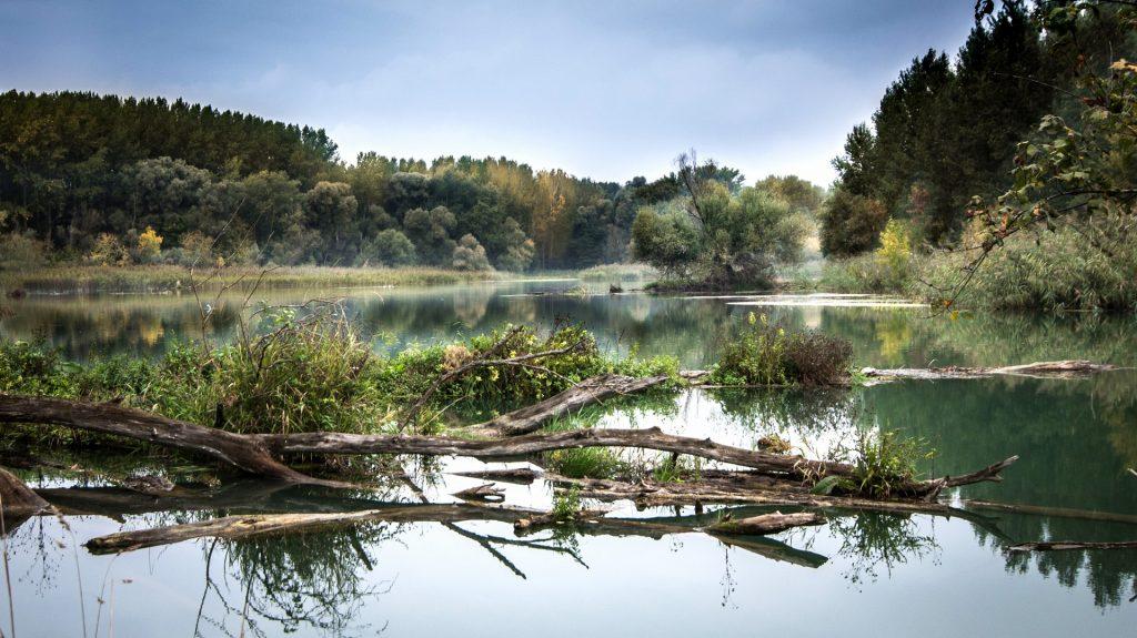 Medzinárodný deň Dunaja_2