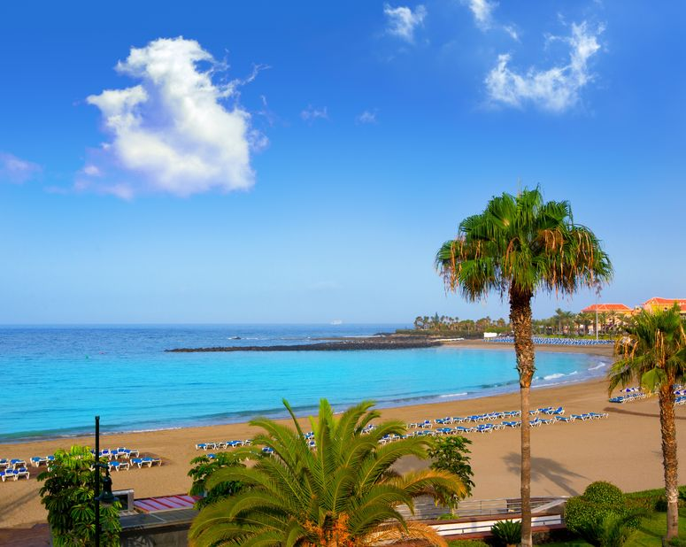 15275067 - las vistas beach arona in costa adeje tenerife south at canary islands