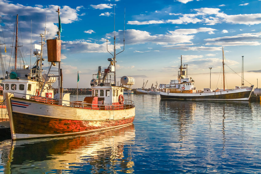 44221431 - panoramic view of traditional old wooden fisherman boats lying in harbor in beautiful golden evening light at sunset, town of husavik, skjalfandi bay, iceland, northern europe