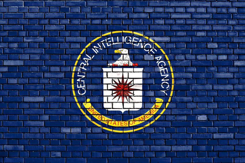 50106114 - flag of cia painted on brick wall