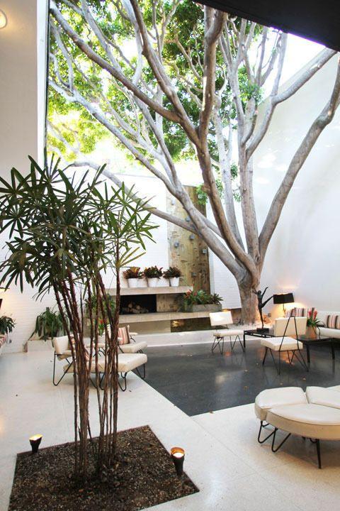 Stromy v dome a byte 6
