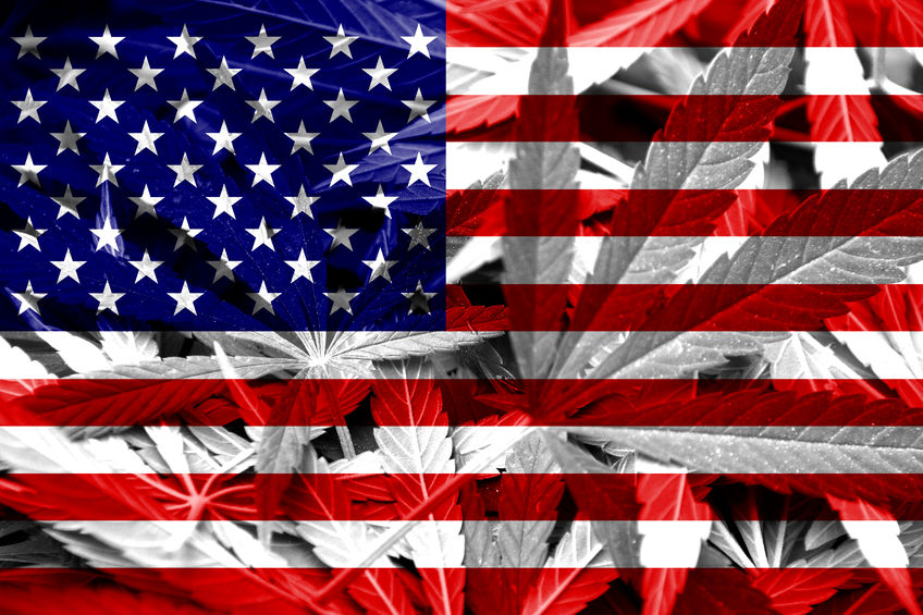 22543514 - usa flag on cannabis background  drug policy  legalization of marijuana
