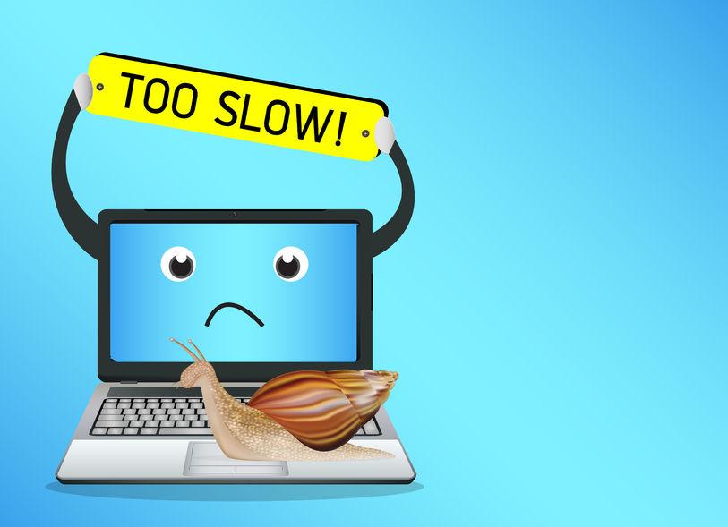 61951776 - snail on a slow laptop
