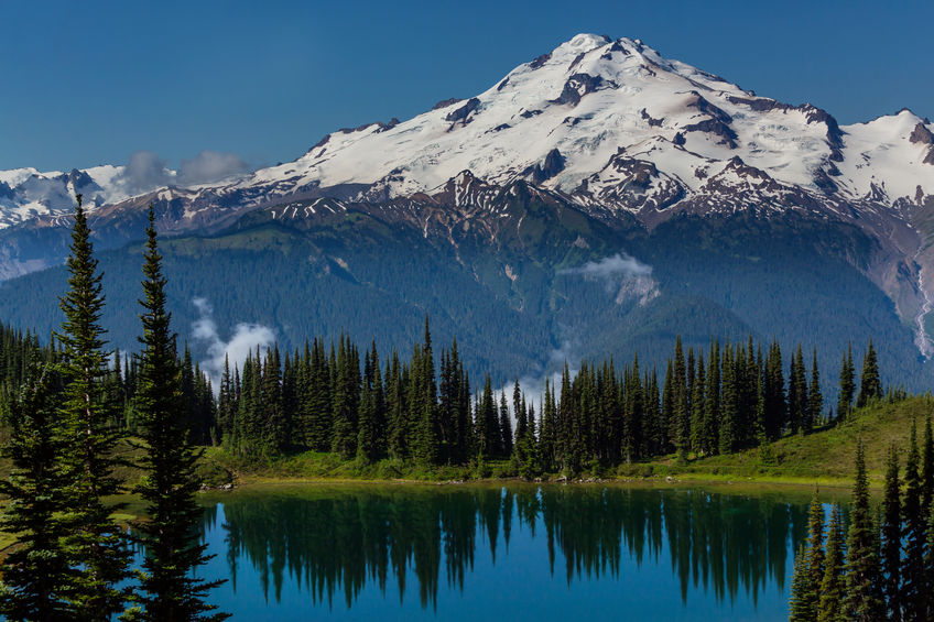 59460267 - mount rainier national park, washington