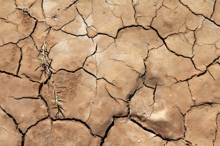 9108106 - greenhouse effect and global warming - dry cracked soil in cuba