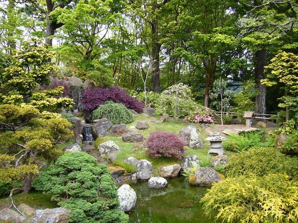 Nova_zahrada