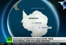 Antarktída a nová forma života, Russia Today