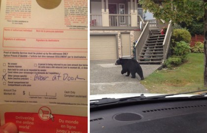 Medveď pri dverách, Kanada