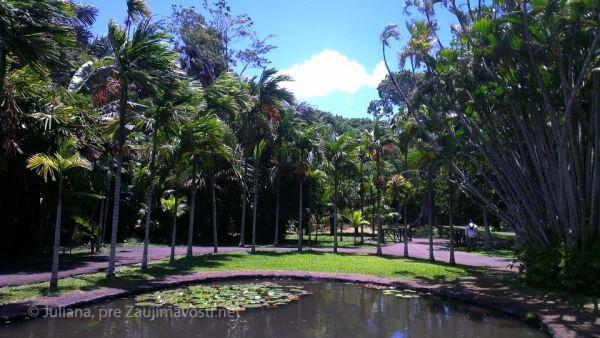 botanicka zahrada ostrov Maurícius