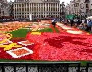 Brusel a kvety