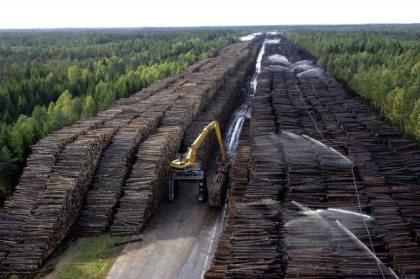 Byholma, švédsky sklad dreva