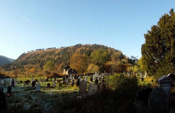Cintorín ilustračné, Janka