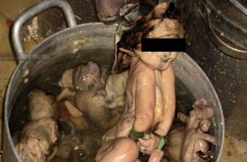 V Číne jedia deti, hnus