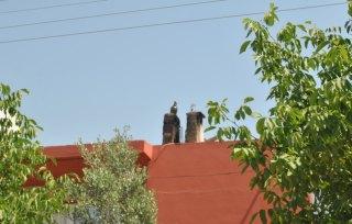 Fľašky na streche a vydaj, Turecko