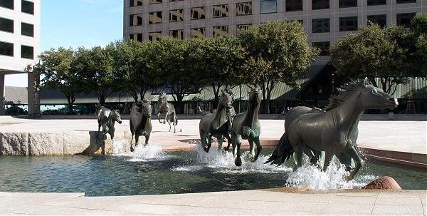 Irwing Dallas kone