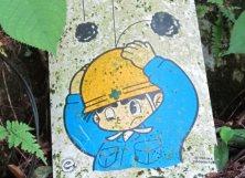 Japonská grafika - pozor padajú kamene ©