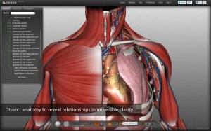 Ľudské telo 3D Biodigital Human