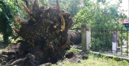 Michalovce: Búrka a smršť